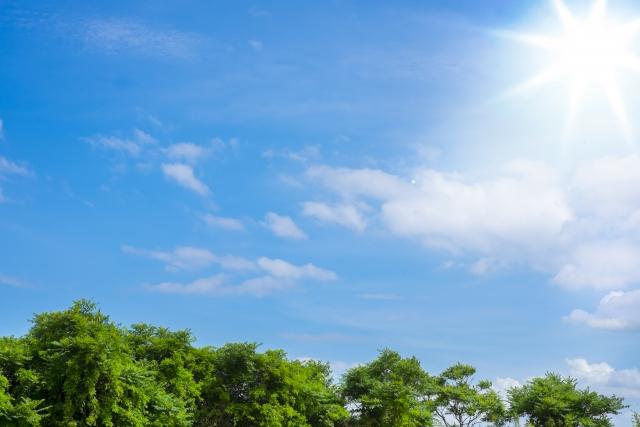 夏の日差しを軽減するアイデア